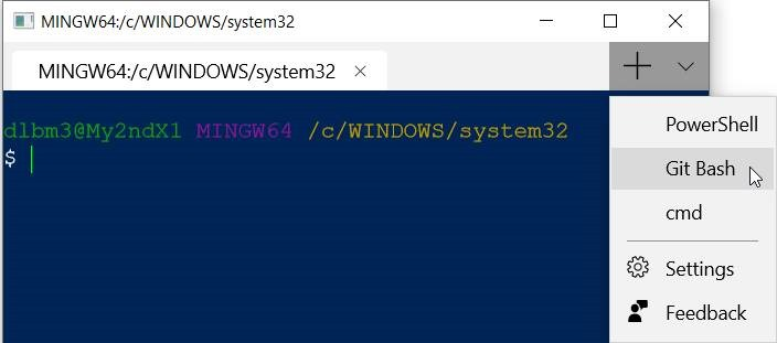Donovan Brown | How to add profiles to the new Windows Terminal